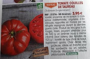 Tomates papy